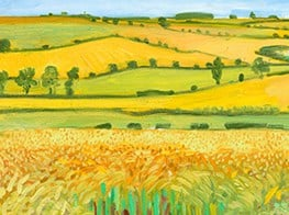 An Exhibition Comparing Hockney and van Gogh Searches for Common Ground