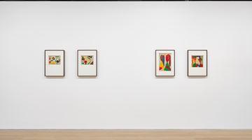 Contemporary art exhibition, Benode Behari Mukherjee, After Sight at David Zwirner, London, United Kingdom