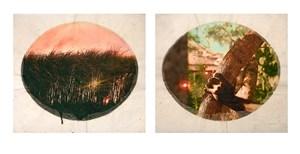 Plantation (Diptych No. 4) by Tracey Moffatt contemporary artwork