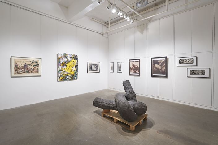 Exhibition view: A Botanical Garden at Hanart, Hanart TZ Gallery, Hong Kong (29 August–10 October 2020). Courtesy Hanart TZ Gallery. Photo: Kitmin Lee