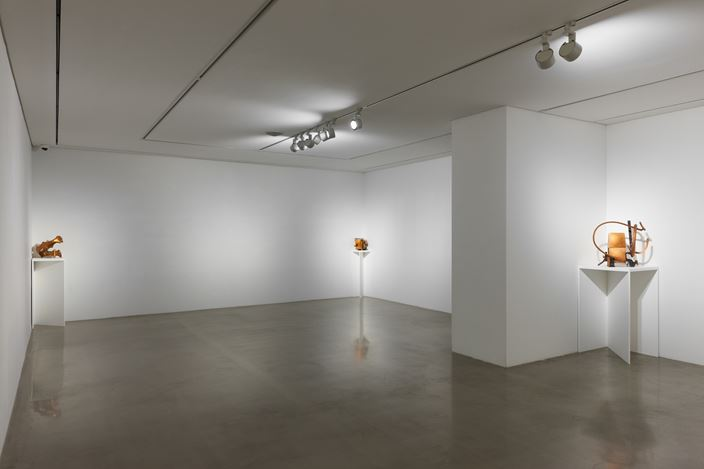 Exhibition view: Tai-Jung Um, A Stranger Holding Two Wings, Arario Gallery, Cheonan (22 January–12 May 2019). Courtesy Arario Gallery.