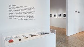 Contemporary art exhibition, Irving Penn, Irving Penn at Pace Gallery, Palo Alto