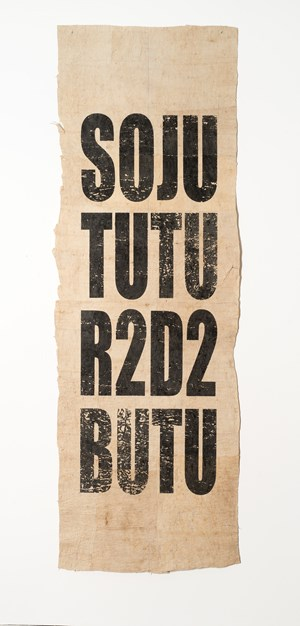 Untitled (SOJU/TUTU/R2D2/BUTU) by Newell Harry contemporary artwork
