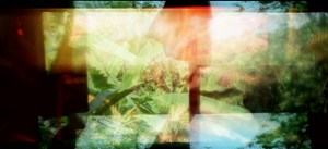 Ashes by Apichatpong Weerasethakul contemporary artwork