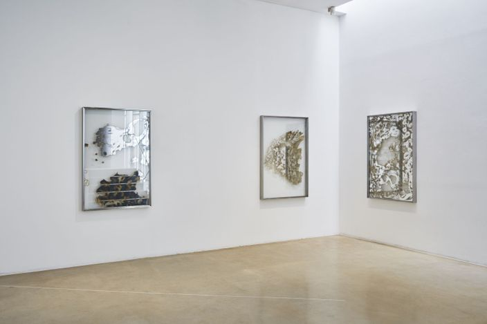 Exhibition view: Soyoung Chung,Sea Cucumber, Manganese and Ear, ONE AND J. Gallery, Seoul (3 June–11 July 2021). Photo:Euirock Lee.