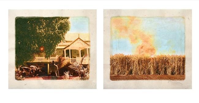 Plantation (Diptych No. 7) by Tracey Moffatt contemporary artwork