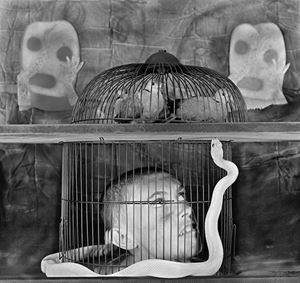 Caged by Roger Ballen contemporary artwork