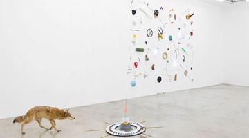 Contemporary art exhibition, Gabriel Rico, Nature Loves To Hide at Perrotin, Paris