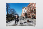 Woman and Dog walking across West Avenue 2020.5.10 by Liu Xiaodong contemporary artwork 2