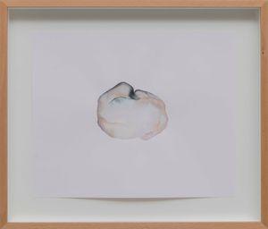 seed, i by Yaşam Şaşmazer contemporary artwork