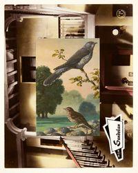 Aviary III by John Stezaker contemporary artwork mixed media