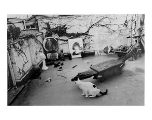 Untitled by Nobuyoshi Araki contemporary artwork