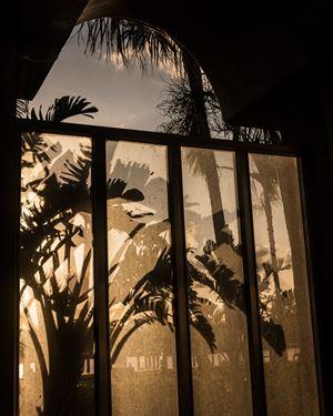 Sunset After Hurricane by Anastasia Samoylova contemporary artwork