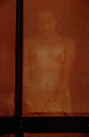 Lanesville (variant) by Saul Leiter contemporary artwork