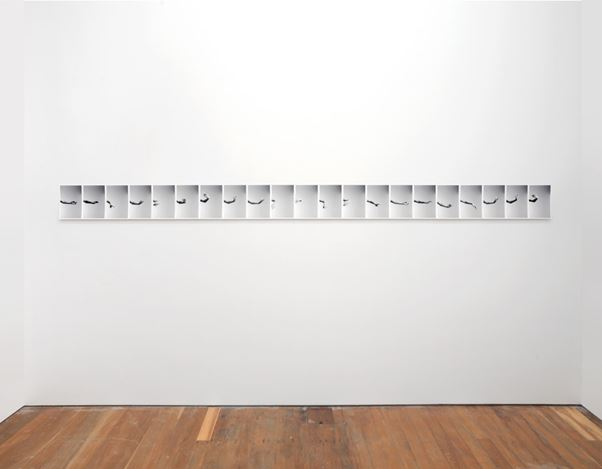 Steve Carr,Studies for Cadence I – XII, (2015). Chromira Prints on 310 gsm Rag Photographique, 256 photographs, 240 x 165 mm each. Exhibition view: Steve Carr, Variations for Troubled Hands, Michael Lett, Auckland (24 June–22 July 2017). Courtesy Michael Lett.