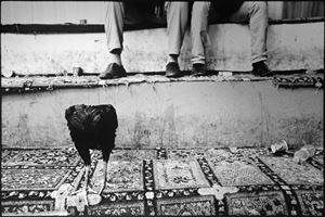 Shepherds and the Slaughterhouse 02, Erbil, Kurdistan Region, Iraq by Simon Chang contemporary artwork