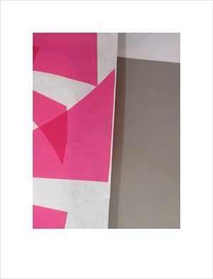 Process Grey and Pink (code unknown) by David Rosetzky contemporary artwork