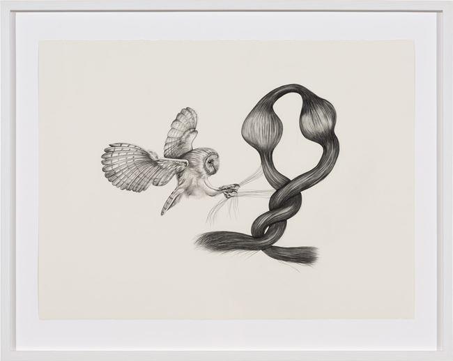 Inseparable (Barn Owl) by Patricia Piccinini contemporary artwork