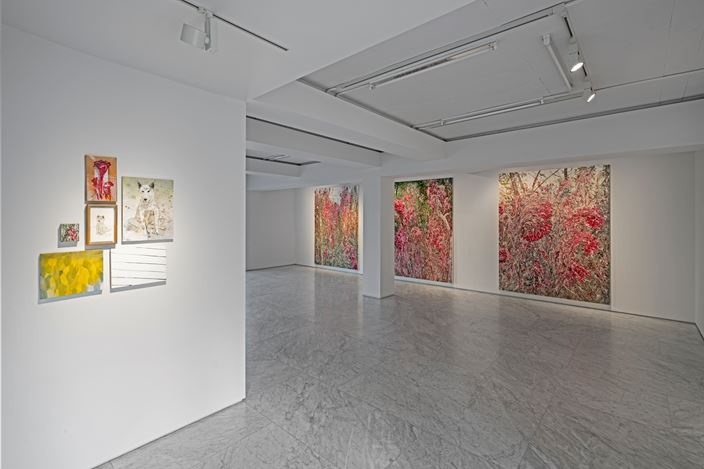 Exhibition view:Jiwon Kim, canvas fly, PKM Gallery, Seoul (30 May–7 July 2019). CourtesyPKM Gallery.