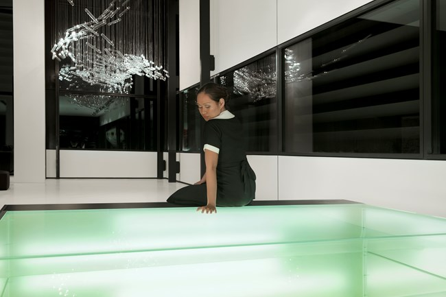 THE MAID / REFLECTIONS by Isaac Julien contemporary artwork