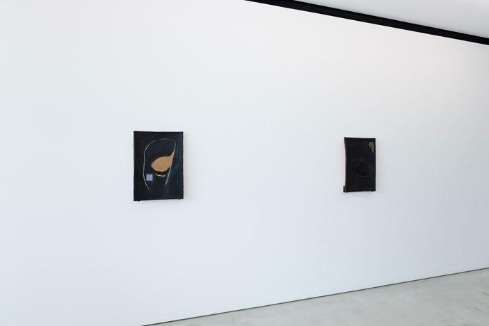Exhibition view: Paloma Bosquê, Dark Matter, Blum & Poe, Tokyo (25 January–29 February 2020). Courtesy the artist and Blum & Poe, Los Angeles/New York/Tokyo.Photo: SAIKI.