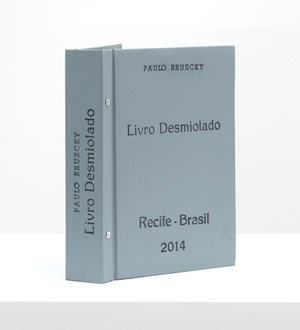 Livro desmiolado by Paulo Bruscky contemporary artwork