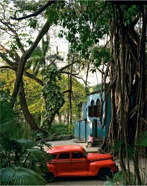 Rosa en Tropical, Cuba by Andrew Moore contemporary artwork