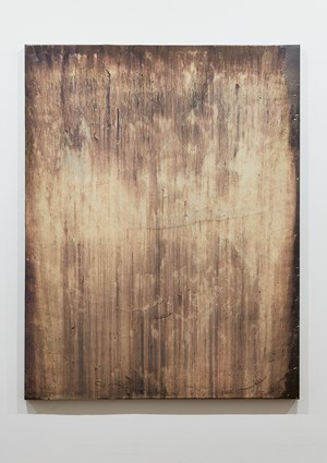Liminus (West Landing 2) by Michael Joo contemporary artwork
