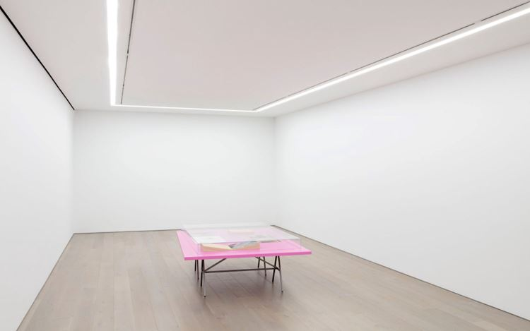 Exhibition view: Leslie Hewitt, Anatomy of a Flower and Other Studio Experiments, Perrotin, New York (29 October–23 December 2020). Courtesy the artist and Perrotin.