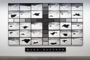 Mare Nostrum (Black Birds) by Kiluanji Kia Henda contemporary artwork