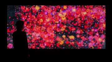 Contemporary art exhibition, teamLab, Flowers and People - A Whole Year per Hour at Martin Browne Contemporary, Sydney