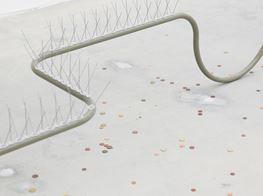 Strange and Seductive Objects: Gabriel Kuri