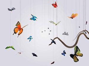 Speak, Memory of Butterflies by Hong Lei contemporary artwork