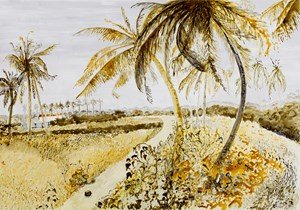 Postcards from Africa: Avenue of coconuts, Nigeria by Sue Williamson contemporary artwork