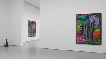 Contemporary art exhibition, Josh Smith, Emo Jungle at David Zwirner, 19th Street, New York