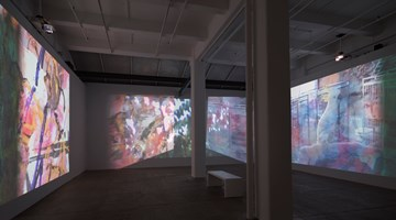 Contemporary art exhibition, Carolee Schneemann, Further Evidence - Exhibit B at Galerie Lelong & Co. New York