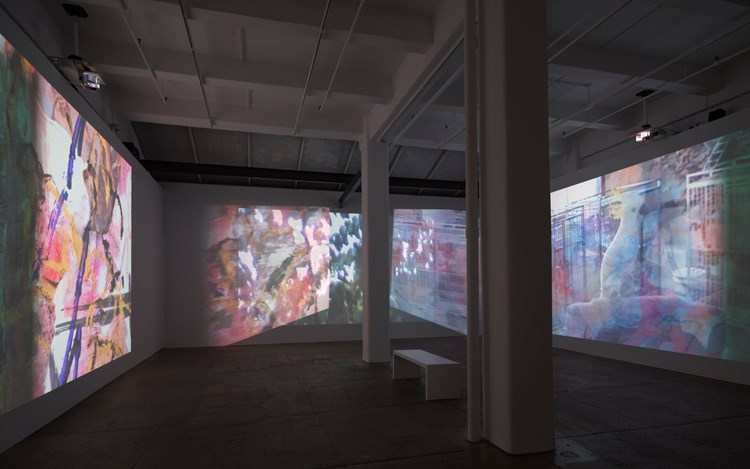Carolee Schneemann, Further Evidence - Exhibit B, 2016, Exhibition views. Courtesy PPOW and Galerie LeLong.