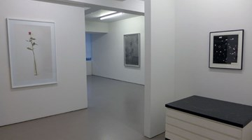 Contemporary art exhibition, Group Show, Photographs and photograms at Hamish McKay, Wellington