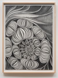 Living Fossil #4 by Faith Wilding contemporary artwork works on paper, drawing