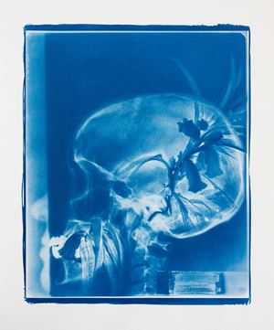 Blue Bones No.3 by Hu Weiyi contemporary artwork