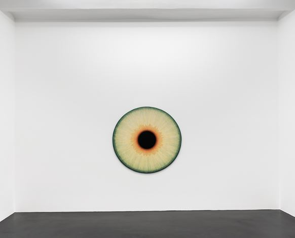 Exhibition view: Ulla Wiggen, Visualities, Galerie Buchholz, Cologne (24 January–4 April 2020).Courtesy Galerie Buchholz Berlin/Cologne/New York.