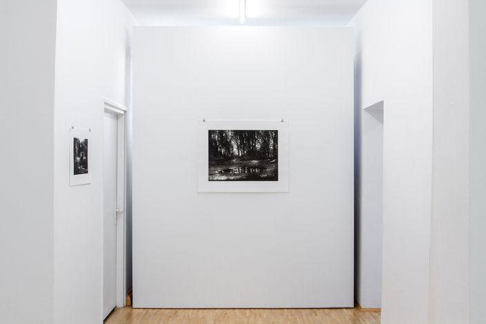 Exhibition view: Stefanie Hofer,Fragmente,Boutwell Schabrowsky, Munich (24 June–31 July 2021). CourtesyBoutwell Schabrowsky.