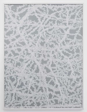 White Noise by Bharti Kher contemporary artwork