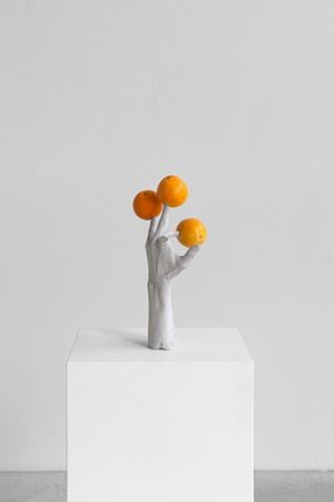 One Minute Forever (hands/fruits) by Erwin Wurm contemporary artwork