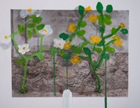 Flower by Honggoo Kang contemporary artwork photography