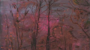 Contemporary art exhibition, Elizabeth Magill, Her Nature at Kerlin Gallery, Dublin