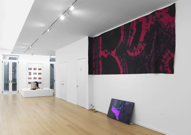 Exhibition view: Group Exhibition, New Pleasure, Simon Lee Gallery, New York (1 November–23 December 2017). Courtesy the Artists and Simon Lee Gallery, New York/ London.
