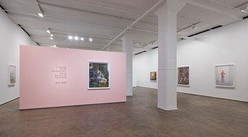 Contemporary art exhibition, Alec Soth, I Know How Furiously Your Heart Is Beating at Sean Kelly, New York