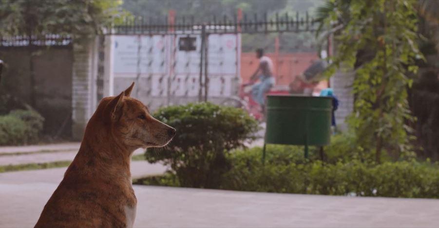Daniel Steegmann Mangrané,Fog Dog(2020). Film still. © Daniel Steegmann Mangrané. Courtesy the artist and Esther Schipper, Berlin.
