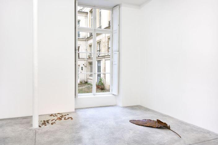 Exhibition view: Thu Van Tran, Trail Dust, Almine Rech, Paris (23 November 2019–11 January 2020. © Thu Van Tran. Courtesy the Artist and Almine Rech. Photo: Rebecca Fanuele.